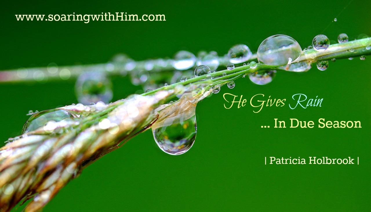 he-gives-rain